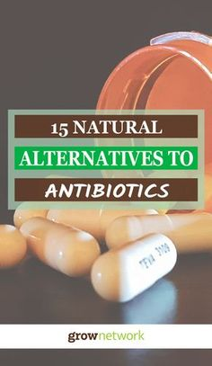 Top 15 Natural Alternatives to Antibiotics   Gardening, Urban gardening, Sustainable living, Permaculture, Homesteading, Compost, Beekeeping, Natural health, Survival, Off-grid, Prepping #growyourowngroceries #homegrownfoodoneverytable