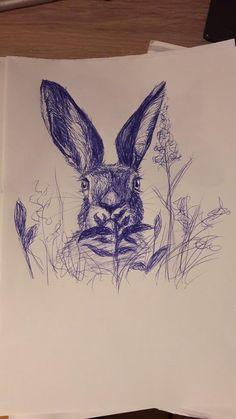 Kugelschreiber-Zeichnung Hase