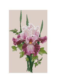 Iris ~  Pattern is on fellow pinner's board at:  https://nl.pinterest.com/delsol1235/flora-punto-x/