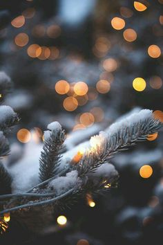 Lights are simply part of Christmas time and winter time. In winter or at Christmas time you can mak Christmas Mood, Merry Little Christmas, Noel Christmas, Winter Wonderland Christmas, Merry Christmas Tumblr, Christmas Decor, Christmas Fashion, Outdoor Christmas, Christmas Christmas