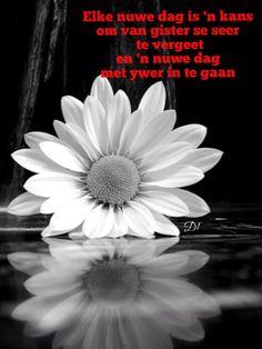 Elke nuwe dag is 'n kans om van gister se seer te vergeet en 'n nuwe dag met ywer in te gaan