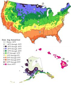 Age Adjusted Mortality Rate Diverging From Average By US County - Us gardening zone map
