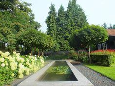 Inspired by Dick Beijer . My garden.
