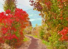 An Autumn Walk Greeting Card