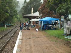 Inchanga Railway Station looking down the main line on Inchanga Choo Choo running day with craft market on the platform. Picnic area set on the left. Taken by Bruce D Bennett Running Day, Steam Railway, Rolling Stock, Craft Markets, Picnic Area, Street View, Platform, Wedge, Vehicles