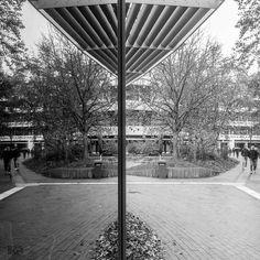 #reflectember pt. X Früher war hier mehr Durchblick. Cafe Uni Dortmund. . . . #dortmund #igersdortmund #ruhrgebiet #ruhrarea #ruhrdistrict #universitätdortmund #universitydortmund #unidortmund #reflektion #reflection #spiegelung #symetrisch #schattenundlicht #shadowsandlight #streetphotography #street #streetstyle #symmetric #powershot #canon #powershotgx7 #schwarzweiß #schwarzweiss #insta_bw #blackandwhite #bw #bw_lover #bw_crew #bnw
