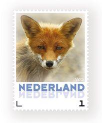 sinds 25-3-2013 Postzegels 2013 : Vos  54 eurocent