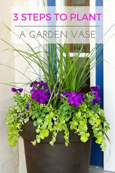 Planting a Perfectly Proportioned Garden Vase -- Pinned nearly 100,000 times! Three easy steps to planting a garden vase that will be a beautiful focal point for your front porch or deck! | http://unsophisticook.com