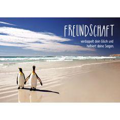 Freundschaft/Bild1