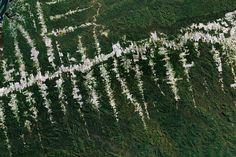 Satellite image of deforestation in Brazil, courtesy of Google Earth