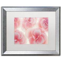 """Trademark Art Rose Begonia Flowers by Cora Niele Framed Photographic Print Size: 16"""" H x 20"""" W x 0.5"""" D, Frame Color: Brown"""