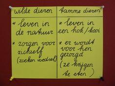 MWidW Wilde dieren Tamme dieren woordkast