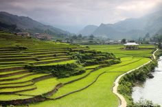 Sapa Valley / CW Ye #travel