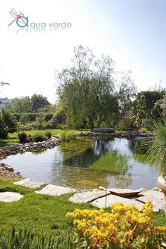 aquaverde piscine naturelle The principle of a biological swimming pool lies in its system maintenance and filtration that… Swimming Pool Pond, Natural Swimming Ponds, Natural Pond, Swimming Pool Designs, Pool Installation, Water Features In The Garden, Dream Pools, Beautiful Pools, Pool Houses