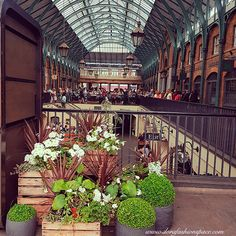 covent garden photography workshop