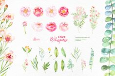 Love Whispers. Floral Collection by OctopusArtis on Creative Market