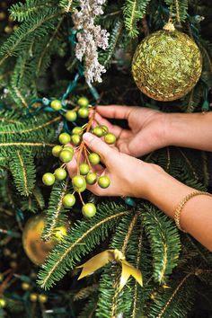 Christmas Tree Dining - Elegant Christmas Dinner Decor - Southernliving. Place a tree in the dining room so guests can enjoy its glow. Choose decorations that coordinate with your tablescape.