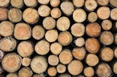 2481126-Background-of-wooden-logs-piled-up-into-a-stack-Stock-Photo-logs-wood-log.jpg (1300×864)