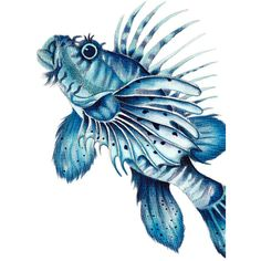 Swimming Lionfish watercolour Art Print of a contemporary Watercolor... ($27) ❤ liked on Polyvore featuring home, home decor, wall art, heart illustration, heart wall art, blue wall art, beach wall art and paper wall art