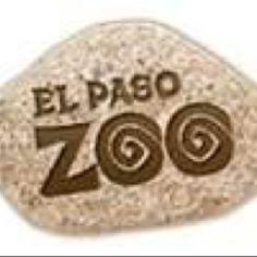 El Paso Zoo, Have more of 200  animal species: lions, tiger, zebras, snakes birds, etc