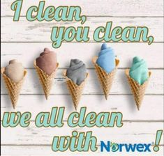 Norwex Party, Norwex Consultant, Norwex Cleaning, Waste Solutions, Zero Waste, Ads, Posts, Engagement, House