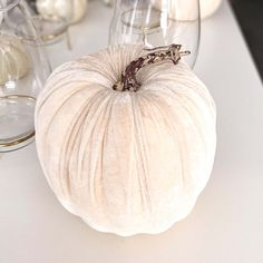 Igazán tökéletes őszi kiegészítő a lakásodba ez a fehér vagy szürke bársony tök dekoráció. A termék mérete: 15×24 cm Az itt látható dekoráció készleten van, az aktuális árukészletünk része. Onion, Garlic, Vegetables, Food, Onions, Essen, Vegetable Recipes, Meals, Yemek