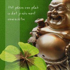 12 Beste Afbeeldingen Van Boeddha Boeddha Woorden En Spreuken