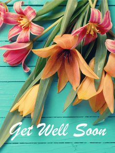 Colorful Flower Get Well Card: Everyone knows being sick can be painful, upsetting and uncomfortable. To show your sympathy to your friend or family member while they are sick, send them a sweet Get Well card!   The beautiful orange and pink flowers add a lovely touch to your well wishes and let your loved ones know that you care. Let them know you are thinking about them by sending this Get Well card today!