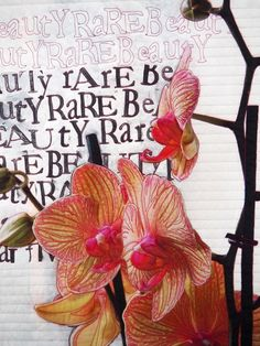 Rare Beauty, by Laura Kemshall