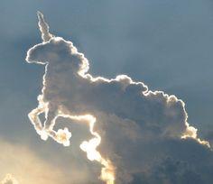 유니콘을 빼닮은 구름...왕재수^^
