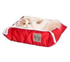 just in! multirelax cat bed in raspberry! Gorgeous & comfy!  #cats #catbed #petbed #catlady #catproducts #luxurycats