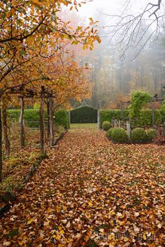 Beautiful Autumn Gardens | Traditional Home