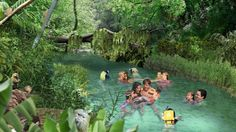 Foto by Discovery Cove - Freshwater Oasis