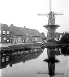 Molen de Stier in Leiden. Leiden, Statue Of Liberty, Capri, History, Travel, Taurus, Statue Of Liberty Facts, Historia, Viajes