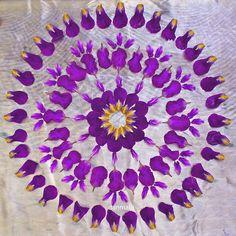 Iris #danmala #flowermandala #mandala #meditation #flowerart #natureart #naturemandala #kathyklein #purpleflowers #purple #dscolor #dspattern
