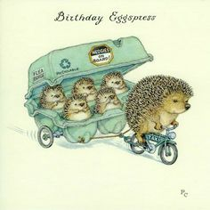 Birthday card illustrated by Peter Cross with a very sweet picture of a hedgehog taking her babies for a ride