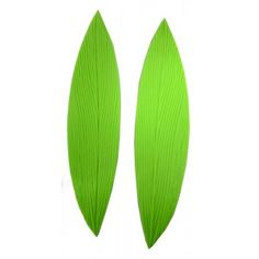 Shop online for NY Cake Leaf Veiner Set - Silicone - Parrot Tulip at Golda's Kitchen; the leading Canadian on-line shopping site for quality bakeware, cookware, and cake decorating supplies. Parrot Tulips, Cake Decorating Supplies, Sugar Flowers, Tutorial, Cactus Plants, Leaves, Kitchen, Parties Kids, Cooking