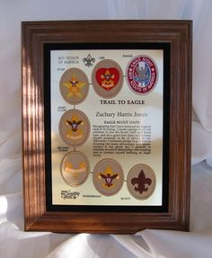 eagle plaque.JPG gift idea!