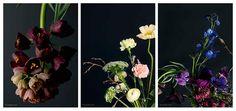 Få 6 nr. af BO BEDRE + 3 smukke blomsterplakater | Bonniershop