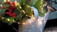 Holiday Lights All Year Winter Container Gardening, Holiday Lights, Planter Pots, Entertaining, Plants, Plant, Funny, Planets, Terraced Garden