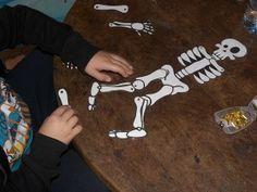 Squelette articulé : un modèle à imprimer | Jeux et Compagnie
