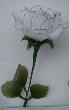La rosa de la esperanza