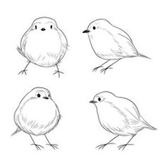 Illustration of Hand drawn line art set of cute different Robin birds vector art, clipart and stock vectors. Ink Pen Drawings, Art Drawings For Kids, Bird Drawings, Cartoon Drawings, Robin Vogel, Bird Line Drawing, Painting & Drawing, Watercolor Paintings, Watercolour