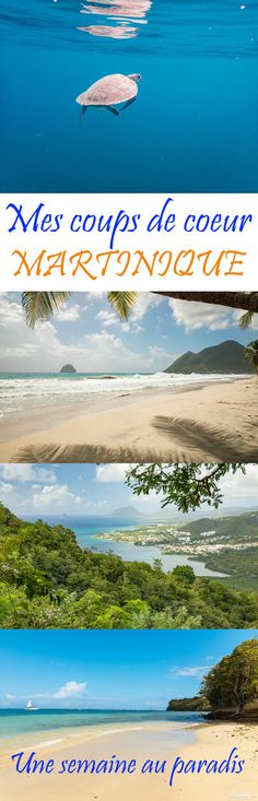 Mes coups de coeur et incontournables en Martinique : voyage d'une semaine au paradis. #Martinique