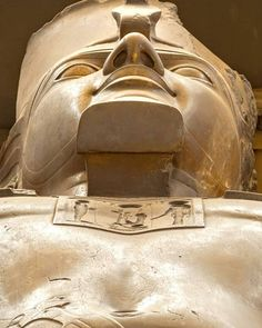 """amazingegypt 📸🇪🇬 posted on Instagram: """"Close up of the Great Statue of Ramses II at Memphis, near Giza Egypt. 🇪🇬📸 . . #ancientegypt…"""" • See all of @amazingegypt__'s photos and videos on their profile."""