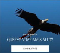 Vemo-nos na Nossa Catedral: O Benfica está a recrutar, está é a tua oportunidade.