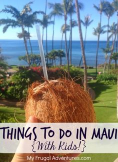 Things to Do in Maui (with Kids)
