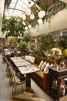 Stunning restaurant design with plants / hospitality / restaurant interior design / hospitality design / #hospitalitydesign / #hospitality / #hospitalityfurniture Find more inspiration: http://brabbucontract.com/projects