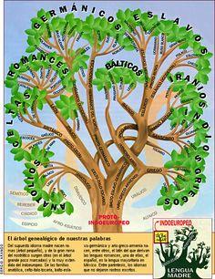Árbol de las lenguas indoeuropeas.
