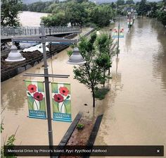 calgary flood worst in city history My Route, Weather And Climate, Live In The Now, Alberta Canada, Natural Disasters, Calgary, Mother Nature, North America